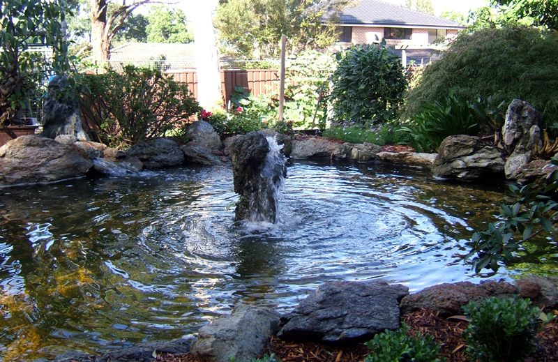Clear water pond filters and custom water features for Pond water features
